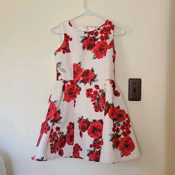 The Children's Place Red Rose Formal Dress NWT
